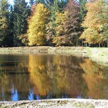 Am Schwarzen Teich 1