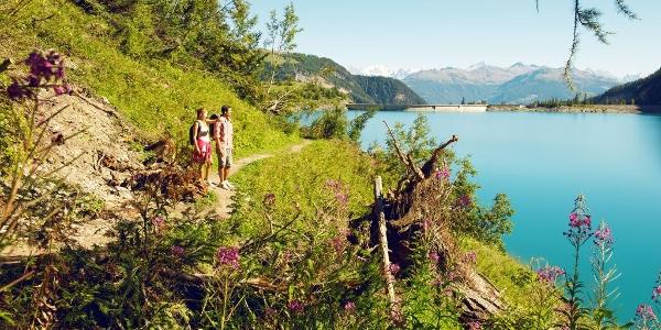 Hike around Tseuzier lake.