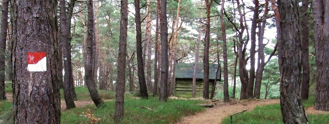Sommerberghütte