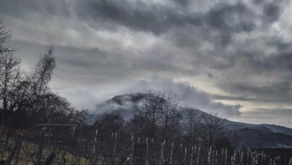 Der Blick auf die Hügel des Wasgau ist auch bei grauem Winterwetter spektakulär.