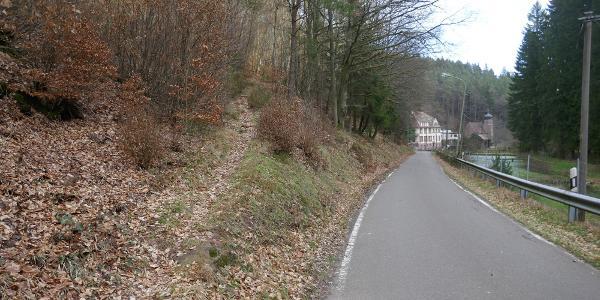 Wir wechseln von der Erlenbacher Straße auf den Pfad