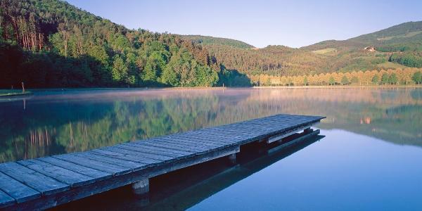 Stubenbergsee (c) Steiermark Tourismus  Popp-Hackner