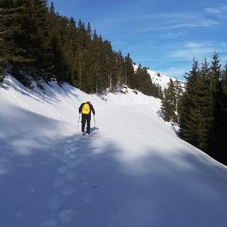 Unberührte Gaberl-Runde: Forstweg