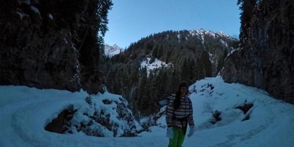 Der Zustieg erfolgt auf dem Forstweg durch das schattige Jochbachtal.