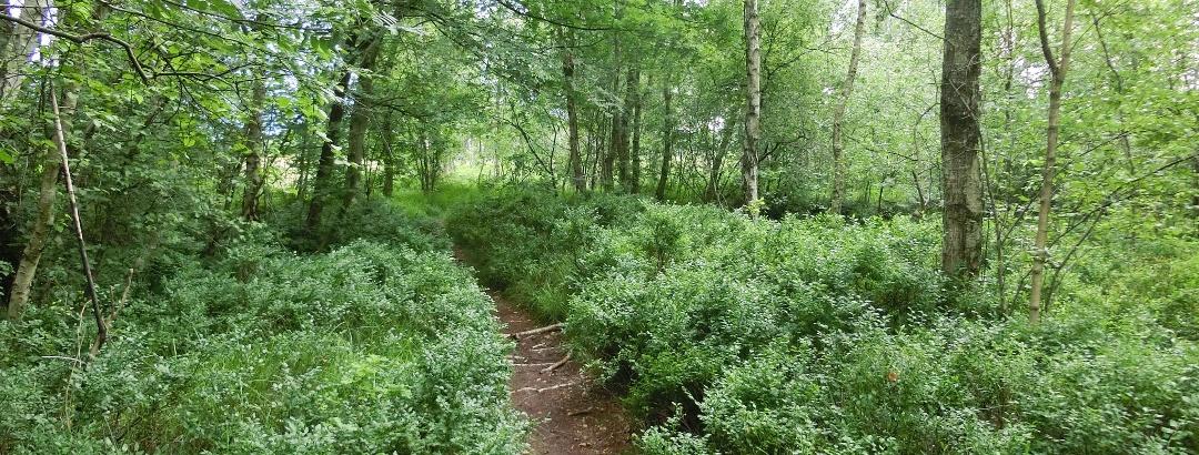 Trail im Oldenburger Südwesten