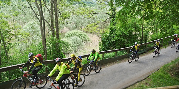 Der Radweg am Loppiosee