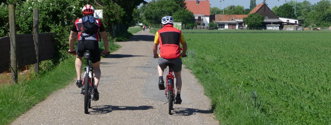 Auf dem Weg zwischen Heidelberg und Schwetzingen.