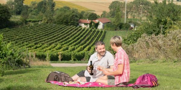 Picknick in den Weinbergen