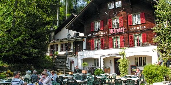 Waldgasthaus Salhöhe.