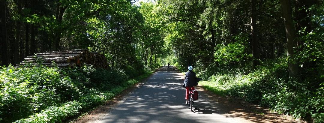 Radweg hinter Missunde
