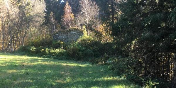 Abstecher zur Ruine Schaumburg