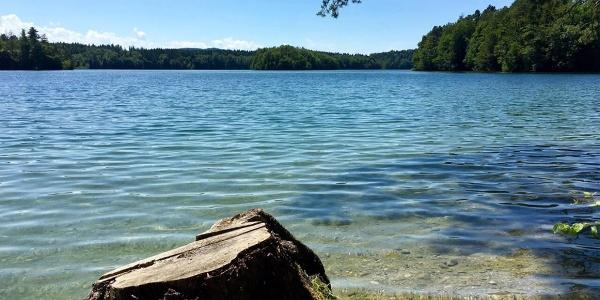 Langbürgner See