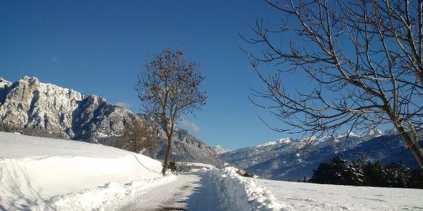 Monte Cornon e Catena del Lagorai