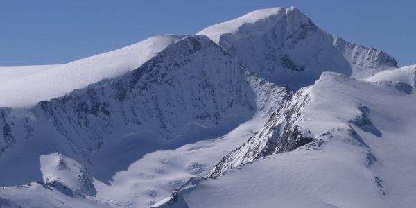 Großvenediger 3663m im Winter von Larmkogel aus