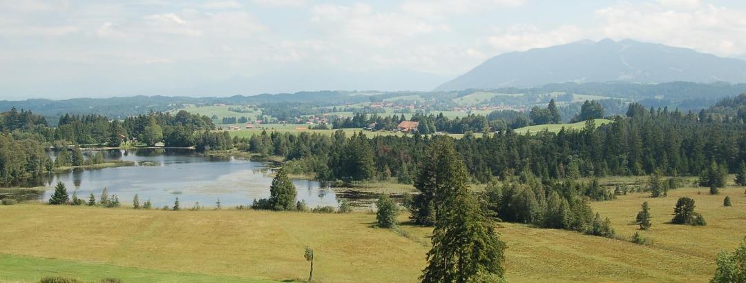 Ausblick von der Schönegg Alm auf den Schwaigsee.