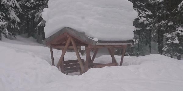 Rodelbahn Buchsteinhütte