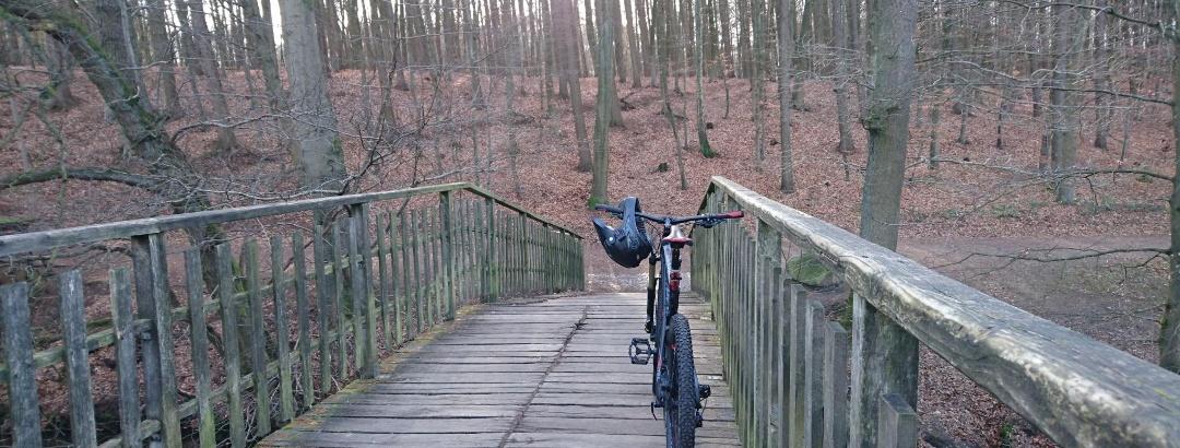 MTB-Tour Bergedorf und Umgebung