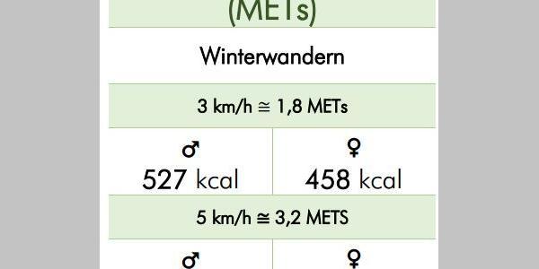 Energieverbrauch (kcal)