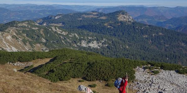 Weit, weiter, Dürrenstein: Blick vom Gipfel über die Hochfläche zum Böhmerwald am fernen Horizont
