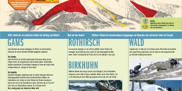 Folder zur Wildruhezone am Göller.