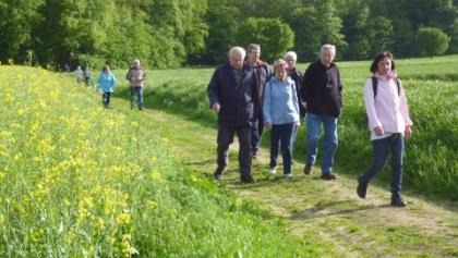 Wandergruppe im Feld