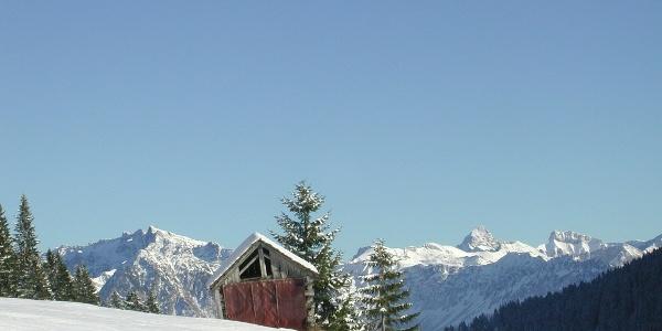 Panoramablick in Balderschwang