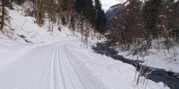Durch die winterliche Landschaft langlaufen