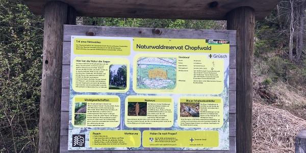Informationstafel zum Naturwaldreservat Chopfwald