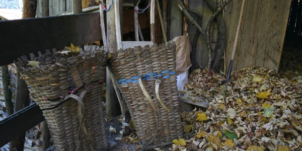 Herbstimpression in Ulmich
