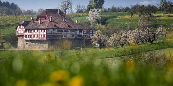Schon bald trifft man auf das idyllisch gelegene Wasserschloss in Hagenwil.