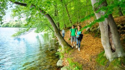 Pfad am Seeufer des Schmalen Luzin in der Feldberger Seenlandschaft