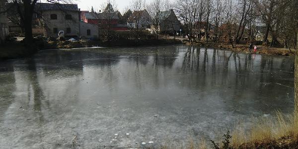 Vereister Teich am Gönnsdorfer Gut
