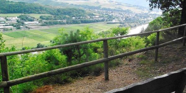 Blick vom Kueser Plateau auf Mülheim an der Mosel