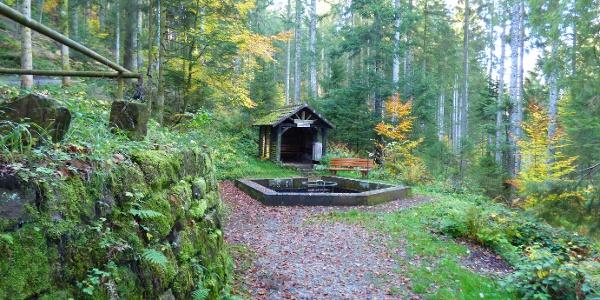 Wassertretanlage am Löwenbrunnen