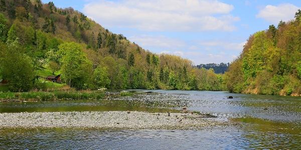 Bei der Tösseegg mündet die Töss in den Rhein.