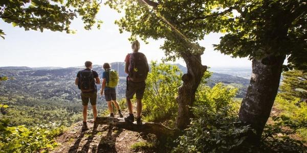 Blick vom Gräbelesberg