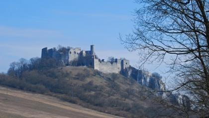 Die Burgruine Falkenstein