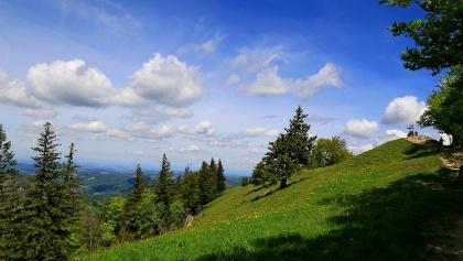 Blick zum Schnebelhorn.