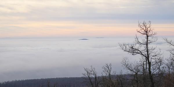 Über Wolken am Kinizsi Pál-Aussichtsturm