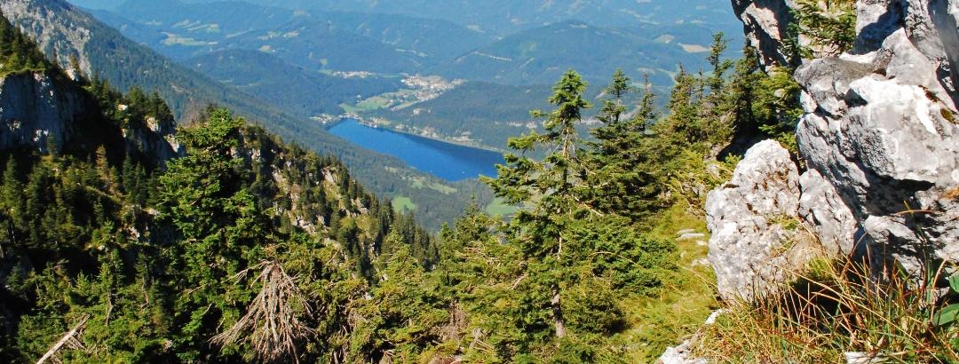 Blick auf den Lunzer See vom Wiesensattel zwischen Scheiblingstein und Scheibe