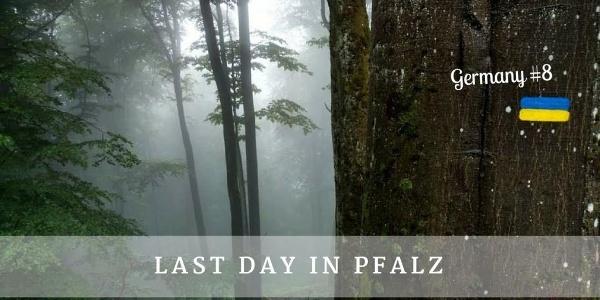 Last day in Pfalz - Germany #8