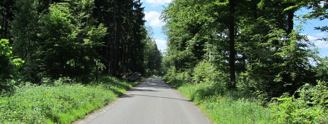 Östliche Schurwaldroute Weg