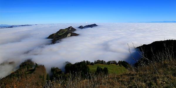 Blick von der Röti auf die Chamben im Nebelmeer.