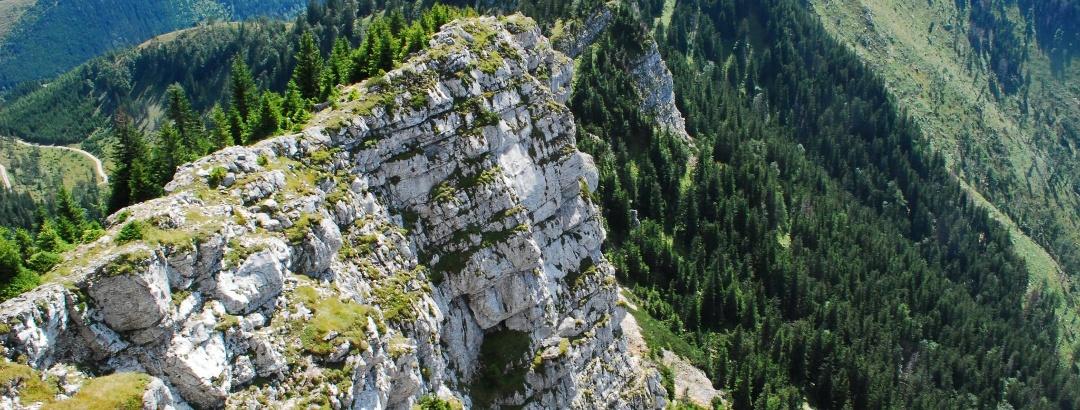 """Der """"Bergrettungssteig"""" verläuft oberhalb der Gippelmauer"""