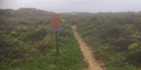 Waymarker along the coast.