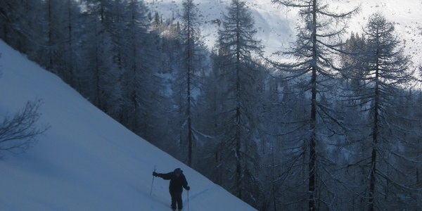 steiler Hochwaldanstieg