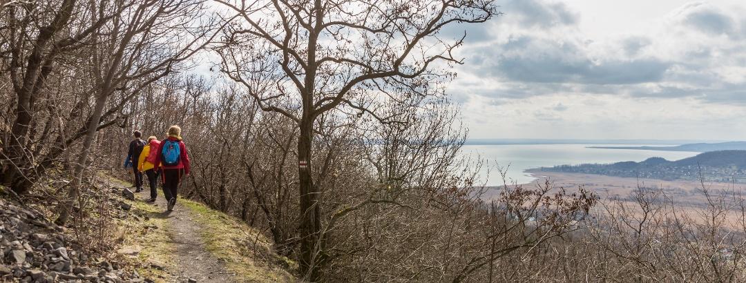 The panoramic path on the northwestern slope of Badacsony