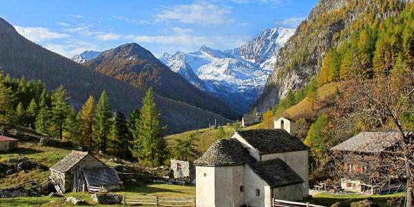 Alpjä