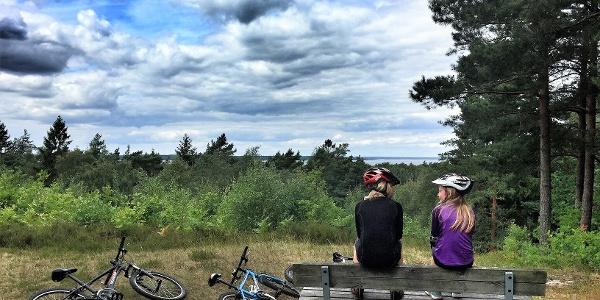 Radtour rund um Öland
