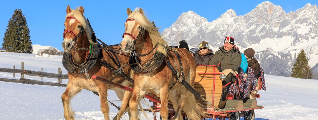 Über die Rohrmooser Frei mit dem Pferdeschlitten - im Hintergrund das Dachstein-Panorama